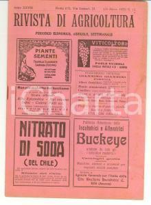1923 ROMA Rivista di agricoltura - Anno XXVIII n° 12