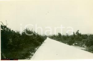 1930 MARZANA (CROAZIA) Strada collegamento POLA-FIUME