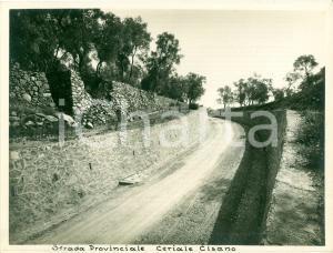 1932 CERIALE (SV) Strada Provinciale per CISANO SUL NEVA *Fotografia
