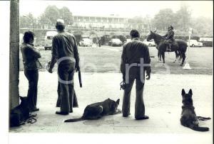 1980 ca MILANO Forze dell'ordine in pattuglia con cani e cavalli *Foto COSTUME