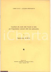 1952 C. Jucci A. Springhetti TERMITI IN SICILIA