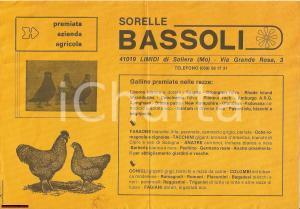 1960 circa LIMIDI DI SOLIERA (MO) Razze Sorelle BASSOLI
