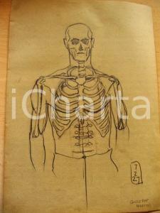 1927 Giuseppe MARETTO Studio per scheletro AUTOGRAFO