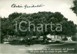 1935 ca CAPRERA Clelia GARIBALDI sotto il pino che porta il suo nome *AUTOGRAFO