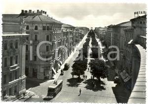 1955 ca ANCONA Filobus Viale della VITTORIA *Cartolina ANIMATA FG NV
