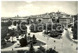 1955 ANCONA Filobus in piazza CAVOUR *Cartolina postale ANIMATA FG VG