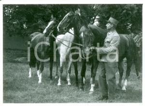 1955 ca SVIZZERA EQUITAZIONE Fantino con cavalli *Cartolina FG NV