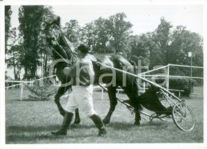 1955 ca SVIZZERA EQUITAZIONE Fantino riporta sulky al peso *Cartolina FG NV