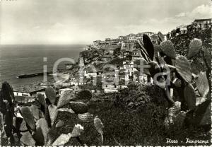 1960 ca PIZZO CALABRO (VV) Scorcio panoramico sul mare *Cartolina FG VG