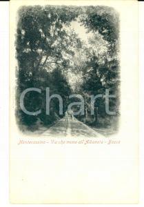 1900 ca MONTECASSINO Bosco sulla via che mena all'ALBANETA *Cartolina ANIMATA