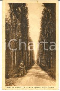 1927 MANTOVA Viale d'ingresso BOSCO FONTANA *Cartolina postale ANIMATA FP VG