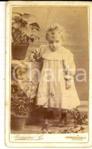 1890 ca DOMODOSSOLA Ritratto di bambina tra i vasi di fiori *Foto RUGGERI
