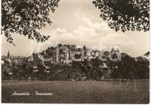 1950 ca AMANDOLA (FM) Veduta panoramica del paese *Cartolina postale FG NV