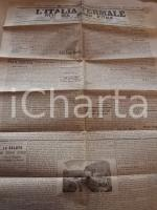 1888 L'ITALIA TERMALE Stabilimento LA SALUTE a CANNOBIO *Giornale anno VII n° 25