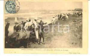 1904 ARMEE D'AFRIQUE - Chasseurs - La Baignade - Arrivée *Carte postale