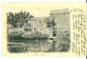 1903 SIRACUSA Fontana Aretusa *Cartolina postale ANIMATA  FP VG