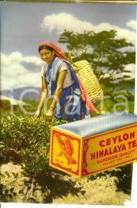 1950 ca CEYLON MINALAYA TEA *Manifesto pubblicitario 24x32 DANNEGGIATO