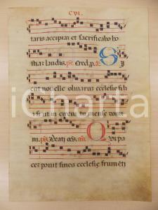 1600 ca ANTIFONARIO ROMANO Pergamena manoscritta rosso nero blu Salmo SICUT
