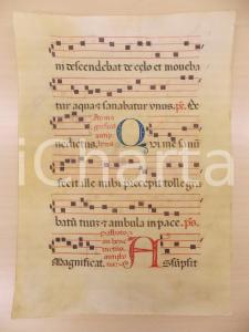 1600 ca ANTIFONARIO ROMANO Pergamena manoscritta rosso nero blu Salmo QUI ME