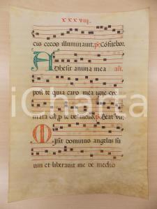 1600 ca ANTIFONARIO ROMANO Pergamena manoscritta rosso nero verde Salmo ADHAESIT