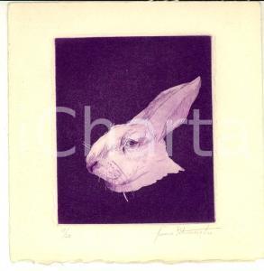 1960 ca Franco PETROSEMOLO Testa di coniglio *Litografia AUTOGRAFA 17/20