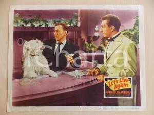 1948 LET'S LIVE AGAIN John EMERY beve cocktaiil con cane *Manifestino LOBBY CARD