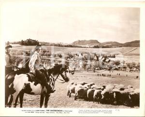 1948 THE SWORDSMAN Larry PARKS con gregge di pecore *Foto di scena