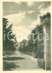 1940 ca BERTINORO (FC) Terme G. MERCURIALI alla FRATTA *Cartolina FG NV