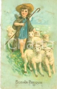 1926 BUONA PASQUA Piccola pastorella con gregge di pecore *Cartolina FP VG