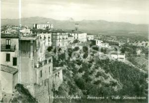 1957 CORIGLIANO CALABRA (CS) Panorama e Viale RIMEMBRANZA *Cartolina FG VG