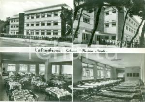 1962 PISA Vedutine Colonia Regina Mundi di CALAMBRONE *Cartolina postale FG VG