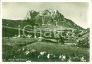 1936 GRAN SASSO D'ITALIA Pastorella con mulo *Cartolina postale FG VG