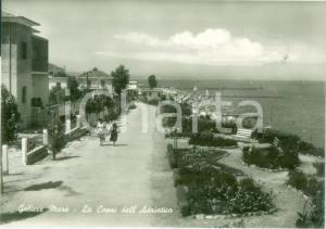 1955 ca GABICCE MARE (PU) La CAPRI dell'Adriatico *Cartolina ANIMATA FG NV