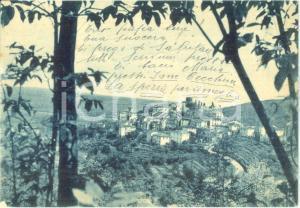 1956 AMEGLIA (SP) Veduta panoramica dal colle *Cartolina FG VG