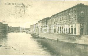 1919 SENIGALLIA (AN) Veduta dei Portici Ercolani *Cartolina postale FP VG