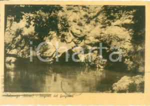 1942 POLCENIGO (PN) le sorgenti del GORGAZZO *Cartolina FG VG