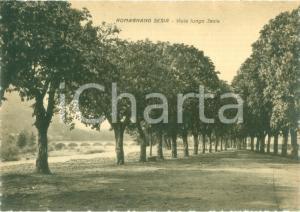 1940 ca ROMAGNANO SESIA (NO) Veduta di Via Lungo SESIA *Cartolina FG NV