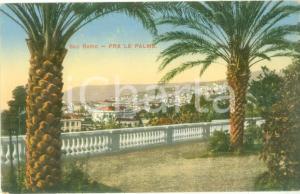 1935 ca SANREMO (IM) Panorama da una terrazza fra le palme *Cartolina FP NV