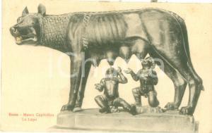 1925 ROMA La Lupa al Museo Capitolino *Cartolina postale FP VG