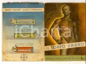 1940 ca MILANO CO-FA Cooperativa Farmaceutica Il corpo umano *Opuscolo BAYER