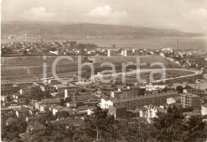 1953 TRIESTE Panorama con IPPODROMO *Cartolina FG VG