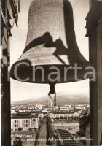 1954 AVEZZANO (AQ) Panorama dal campanile del Duomo *Cartolina FG VG