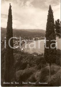 1953 DIANO MARINA (IM) Panorama con cipressi - Riviera dei fiori Cartolina FG VG