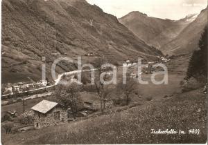 1953 ISOLA DI FONDRA (BG) Panorama frazione TRABUCCHELLO *Cartolina FG VG