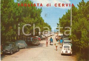 1975 TAGLIATA DI CERVIA (RA) Pineta con FIAT 500 e Vespa *Cartolina FG VG