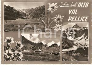 1963 ALTA VAL PELLICE (TO) Vedutine con Rifugio JERVIS *Cartolina FG VG