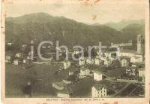 1934 SELVINO (BG) Panorama del paese *Cartolina FG VG