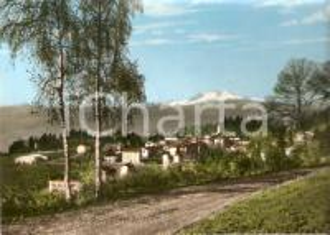 1955 LUVINATE (VA) Panorama con Monte Rosa *Cartolina FG VG