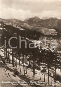 1953 CASTELLAMMARE DI STABIA Monte Faito - Pensione Sant'Angelo *Cartolina FG VG