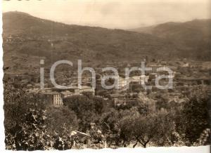 1953 VALLO DELLA LUCANIA (SA) Panorama del paese *Cartolina FG VG